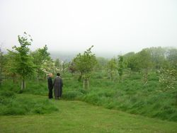 Natural burial incorporated into the existing cemetery of Woodvale in Brighton-Hove, UK photo by C.Beal