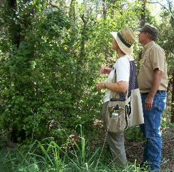 Eloise_woods_naturalists1_300
