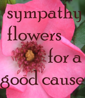 Send Sustainably Produced Flowers