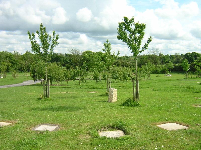 Memorial_woodlands